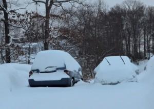 大雪が車に積もっている画像