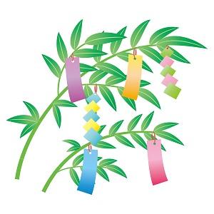 七夕の短冊を竹にぶら下げてる画像